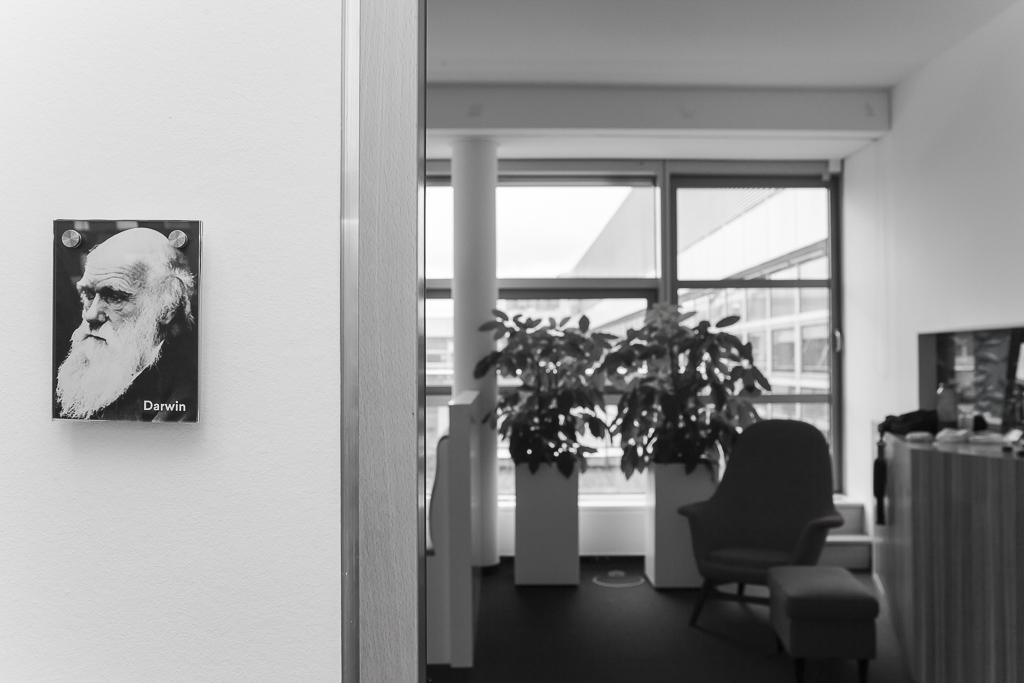Solaris Bank officedropin 6576 1024x683 A Tour of solarisBANKS OFFICE IN BERLIN