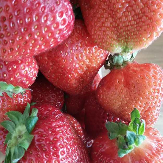 Strawberries - Office Mum