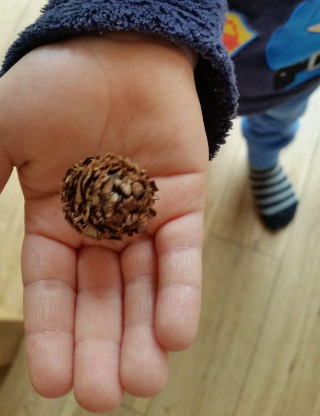 Pineky the pine cone - office mum