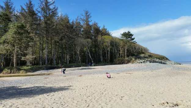Courtown beach - Office Mum