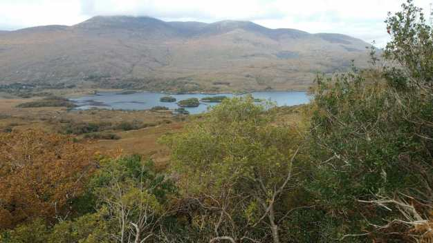 Kenmare - Ring of Kerry - office Mum