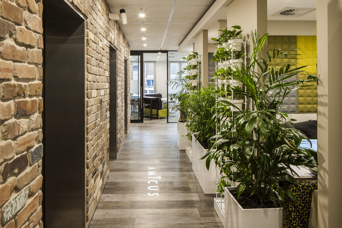 amicus-office-sydney-office-design-1
