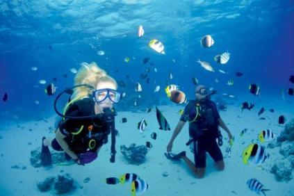 paul gauguin cruises cruise ship diving