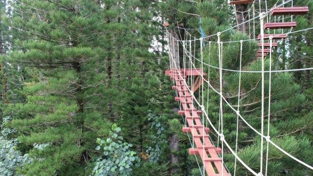 norwegian cruise line pride of america hawaii rope bridge
