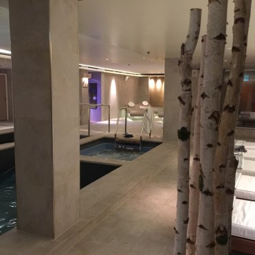 Viking cruises sky cruise ship spa hot tub