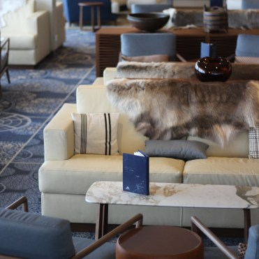 Viking cruises sky cruise ship furs