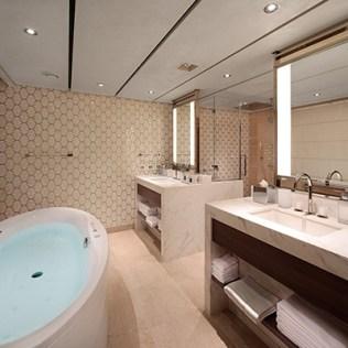 Holland America Nieuw Statendam cruise ship bathroom
