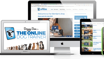 Brain Training For Dogs Review - Analysed By A Certified Dog