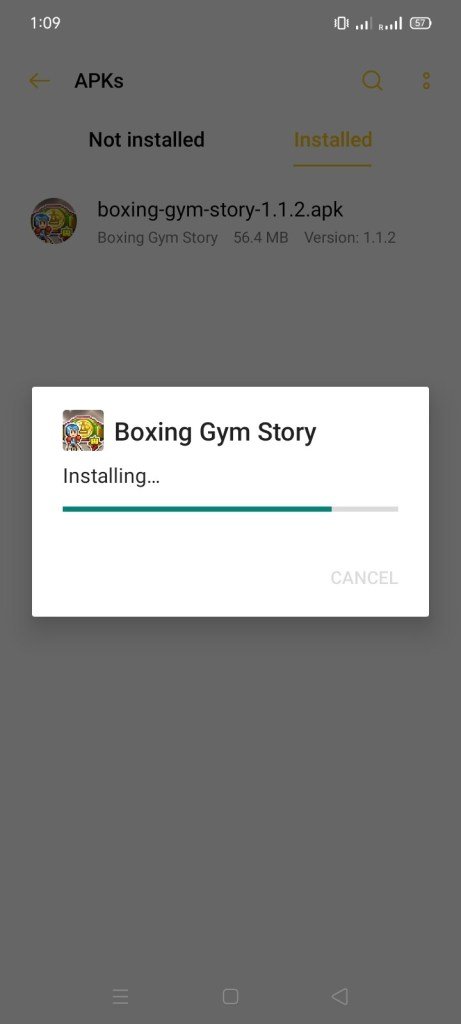 Screenshot of Boxing GYM Story