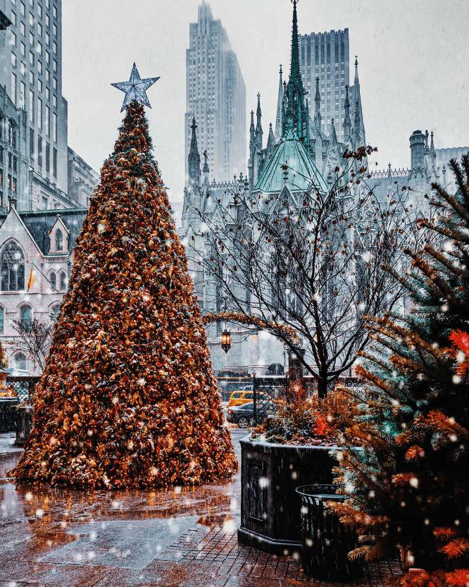 The 10 Best Nyc Christmas Trees That Aren T In Rockefeller Center Secretnyc