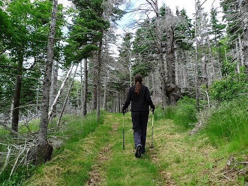 Hiking L'Acadian Trail in Cheticamp