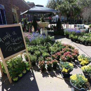 Antiques Vintage and Garden Show