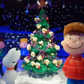 Christmas at Gaylord Palms