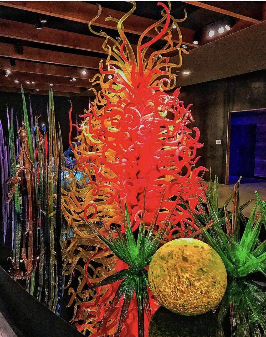 A Garden of Glass - The Chihuly Collection