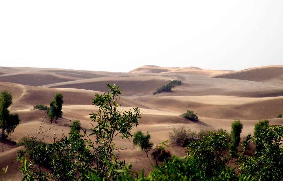 Thar desert – Great Pakistan
