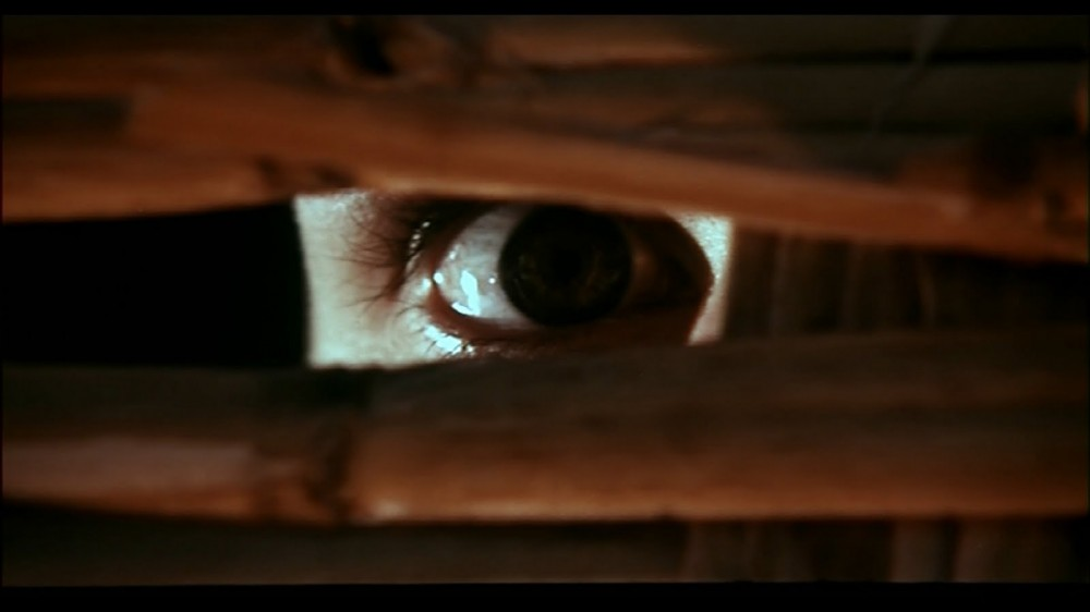 Image result for bay of blood movie
