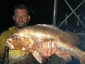Night fishing charter with Offshore Boats - Golden Snapper