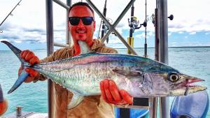 Mackerel on jigs with Offshore Boats bluewater fishing charters