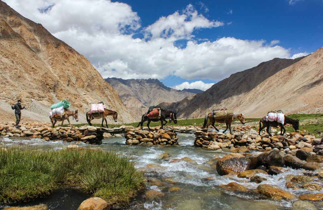 traveler with horses and donkey crossing river in highland