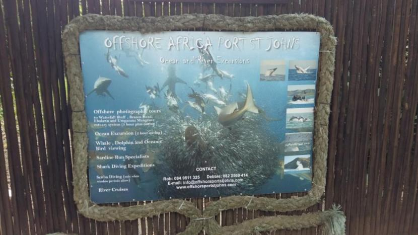 Offshorre Africa dive base