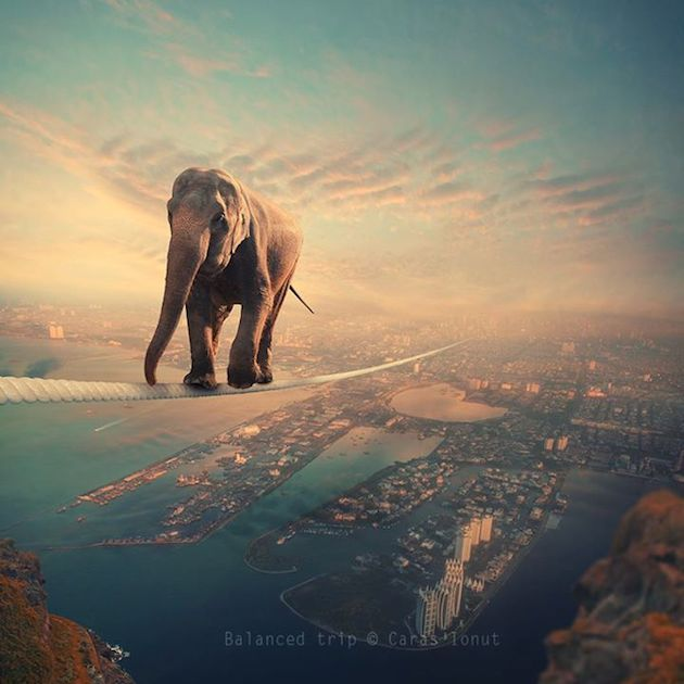 Marvelous Photos By Caras Ionut