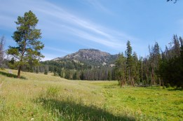 A look at King Butte from a meadow on the trail
