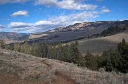 Looking northwest, back towards the trailhead