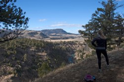 This hike climbs along the top of the canyon of the Yellowstone River