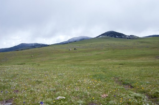 A wide view of the Plateau.
