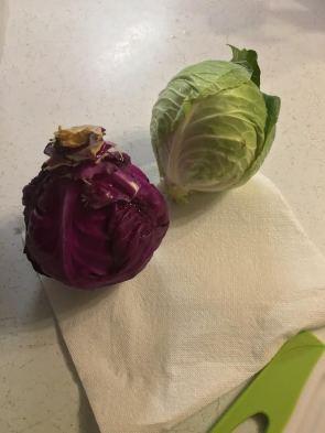 sauerkraut-1