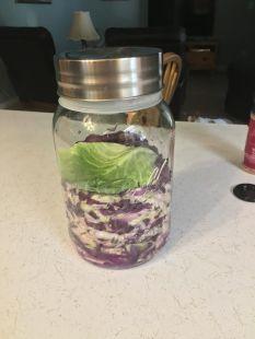 sauerkraut-15