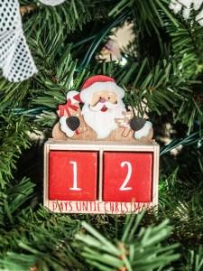 12 days Santa