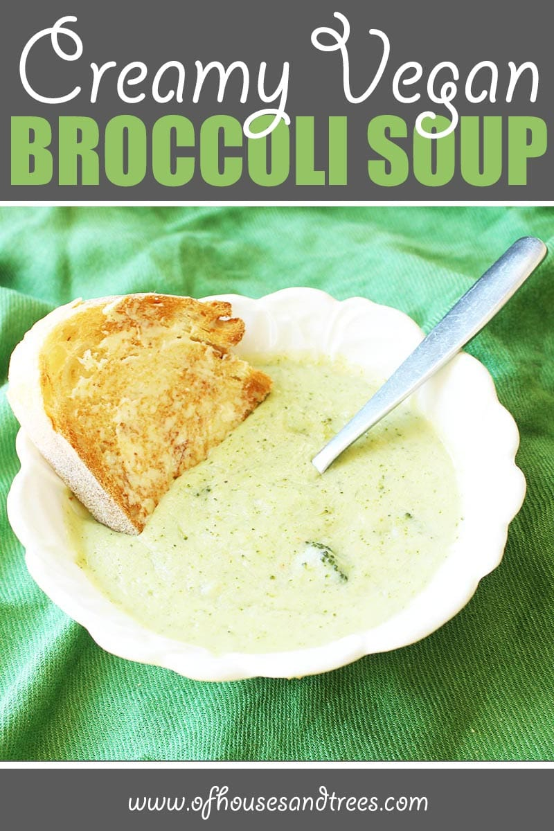 Healthy Broccoli Soup   Thick and creamy vegan broccoli soup... without the cream. Safe for vegans, lactose-intolerants and calorie counters alike. And it's delicious too!