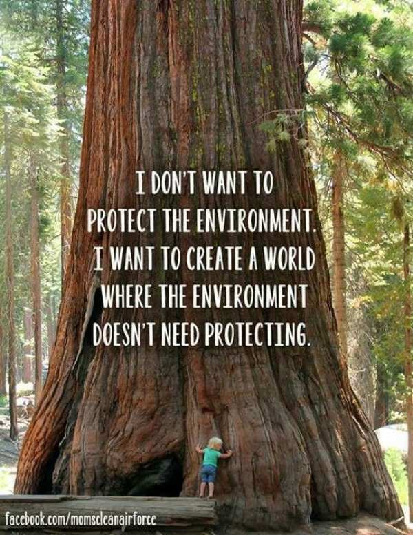 "Sustainability Quotes: ""I don't want to protect the environment. I want to create a world where the environment doesn't need protecting."""