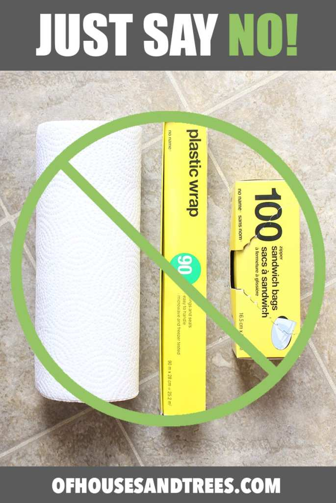 Green-Your-Home-Forgo-Paper-Towel-Plastic-Wrap-Sandwich Bags