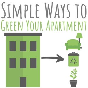 Simple Ways to Green Your Apartment