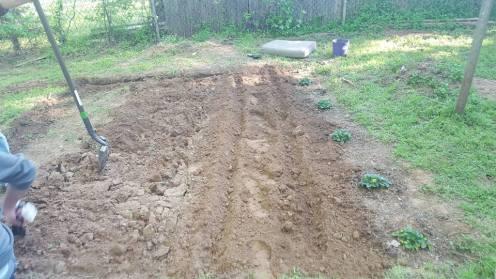 This is my garden last weekend