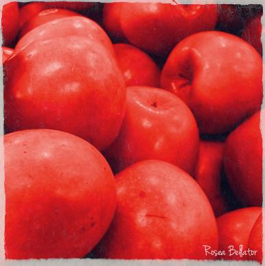 maçã amor e verdade receita