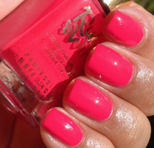 Ruby Wing Summer Festival Paint Collection 2013