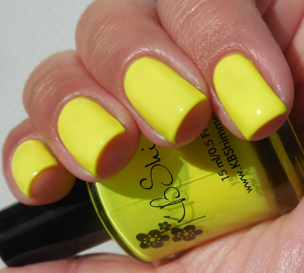 KBShimmer All The Bright Moves Collection All The Bright Moves