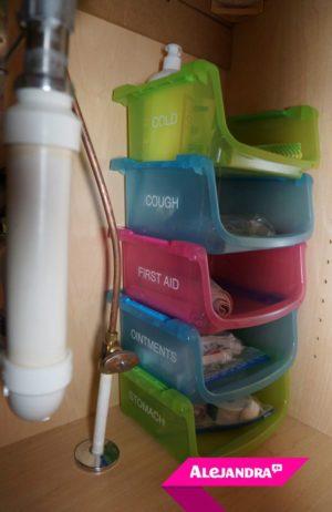 Label cheap plastic bins to organize under your bathroom sink.