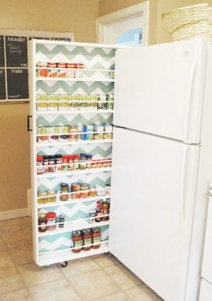 I love this canned food organizer. Fits right between the kitchen wall and fridge.