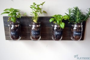 Make your own wall planter using simple mason jars.