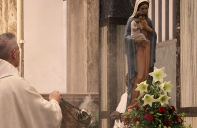 Mary's Intercession Brings us the Gifts of Eternal Salvation –Homily of the Minister General on the Feast of St. Mary Mediatrix