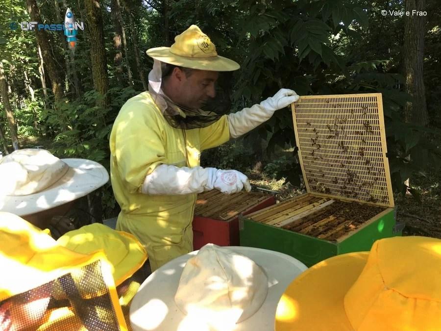 ofpassion valeria cagnina e francesco baldassarre api aria aperta