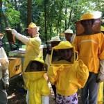 summer camp robotica valeria cagnina francesco baldassarre alessandria 2018 api