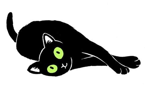 מין חתולה את יוסף 3