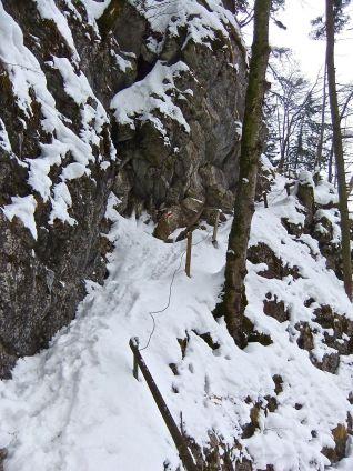 A winter trail better suited for chamois than pilgrims along Lake Lucerne. - Ein winterlicher Pilgerweg am Ufer des Vierwaldstättersees der in diesem Zustand besser geeignet scheint für Gemsen.