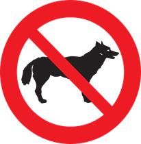 Evitar contato com animais de estimação