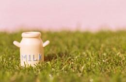 かわいい 牛乳瓶